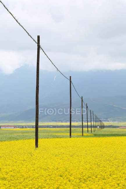 Красивые менюань пастырские пейзажи в провинции Цинхай, Китай — стоковое фото