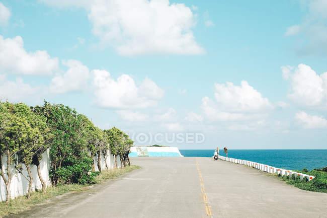 Асфальтированная дорога рядом с деревьями и океаном в солнечный день — стоковое фото