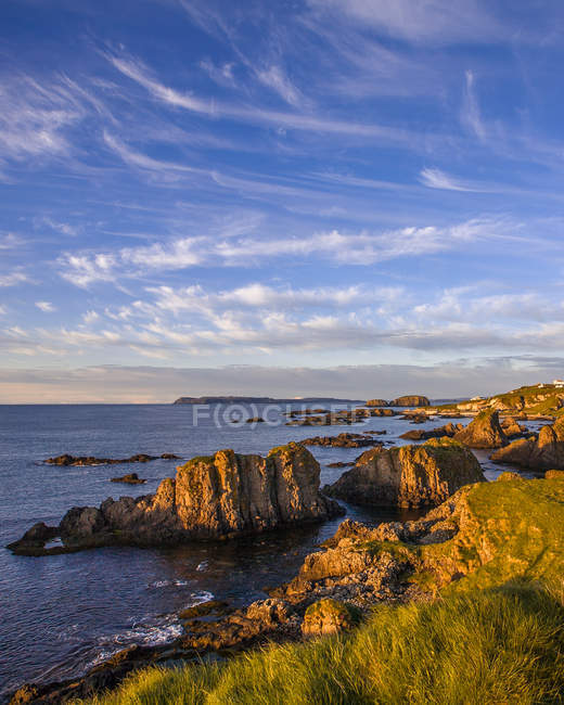 Green grass, cliffs and beautiful sea view at sunny day — Fotografia de Stock