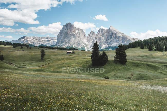 Paisagem surpreendente com as casas no campo de grama e nas montanhas rochosas durante o dia — Fotografia de Stock