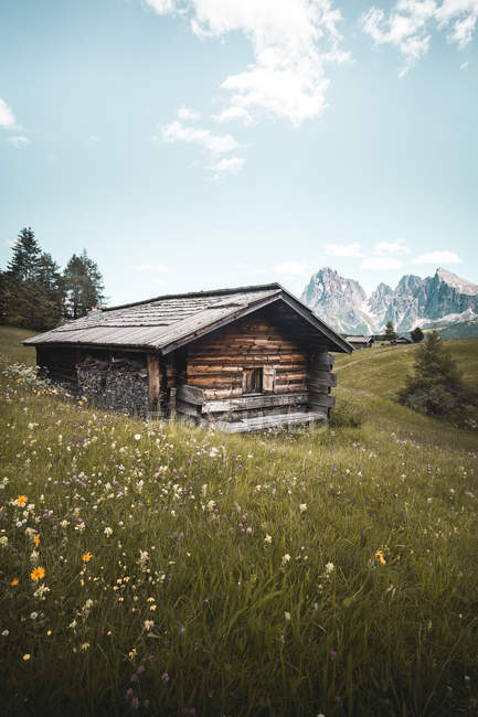 Brown wooden house on green meadow in beautiful mountains - foto de stock