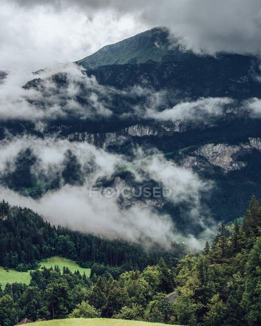 Majestic landscape with clouds and green trees on mountains — Stock Photo