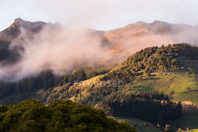 Aerial view of clouds passing near hills with green vegetation — стокове фото