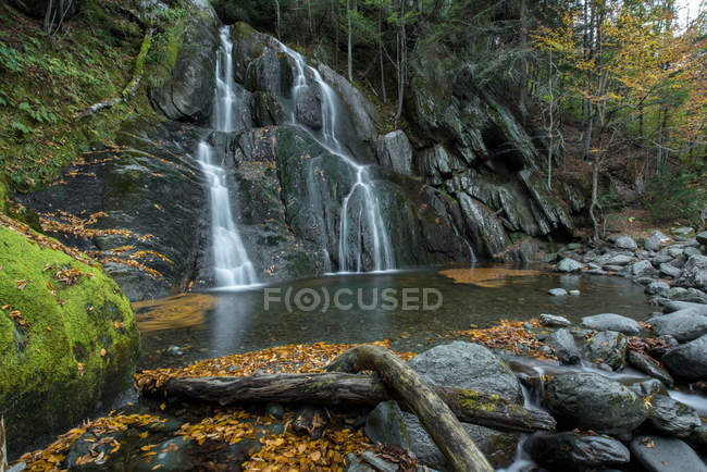 Scenic view of beautiful waterfall on rocks and green forest - foto de stock