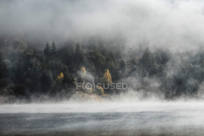 Beautiful landscape with autumn forest and foggy calm body of water — Foto stock