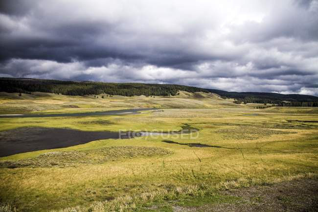 Beautiful landscape with grass on meadow and green trees on hills at cloudy day — Foto stock