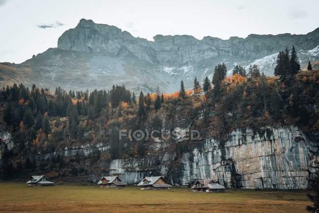 Casas no Prado perto das montanhas rochosas e da floresta majestosas — Fotografia de Stock