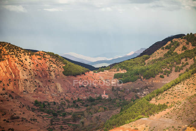 Beautiful landscape with brown hills covered with green plants — Foto stock