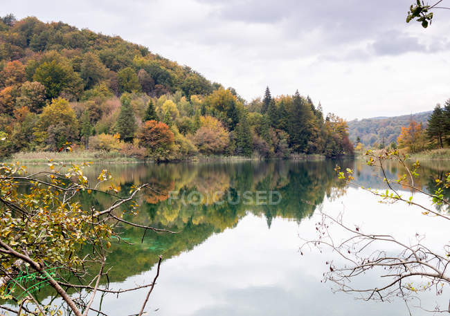 Scenic mountains covered with trees reflected in calm water at autumn day — стоковое фото