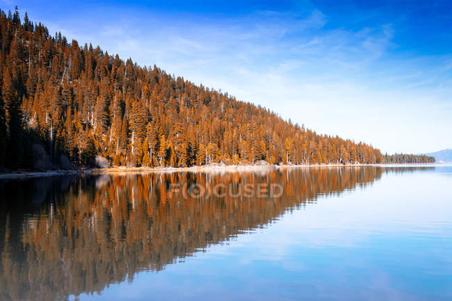 Beautiful autumn trees reflected in calm water at sunny day — стоковое фото