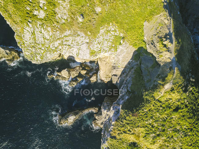 Aerial view of green plants on scenic cliffs over sea - foto de stock