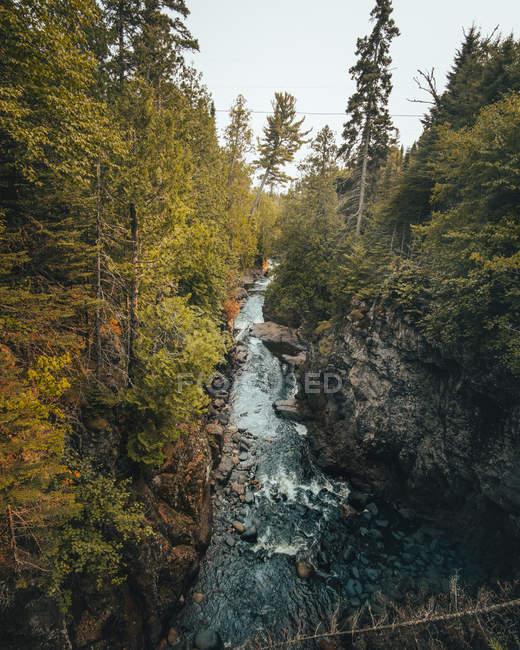 Vista de ángulo alto del río rápido entre el bosque en colinas rocosas - foto de stock