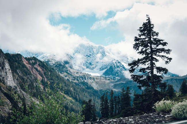 Beautiful landscape with scenic mountains covered with green vegetation and snow — Photo de stock