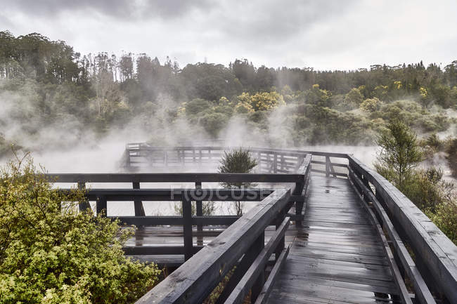 Wooden walkway and fog above scenic lake surrounded by forest — Stock Photo