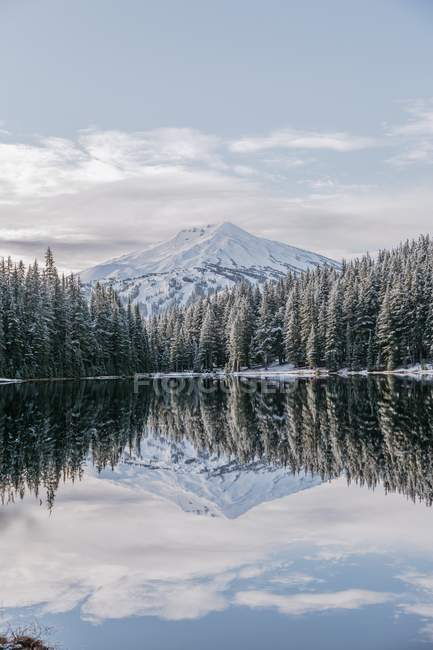 Beautiful snow-covered mountain and trees reflected in calm lake — стокове фото