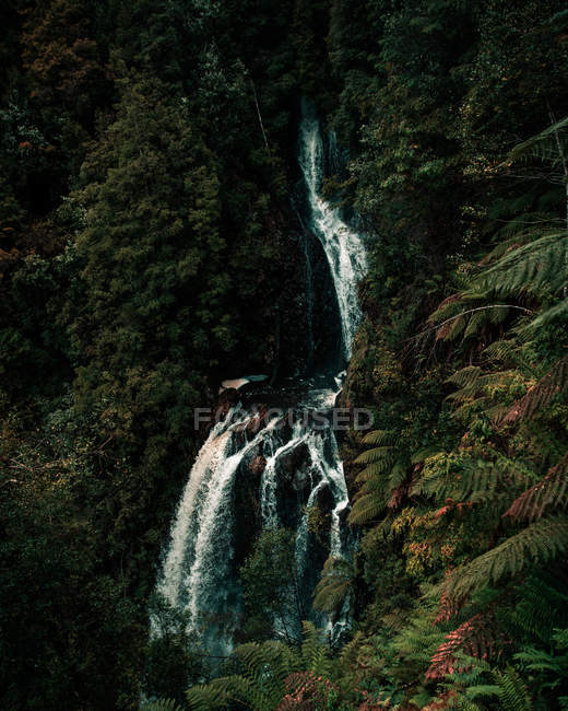 Scenic waterfall on beautiful mountain covered with lush green vegetation — Fotografia de Stock
