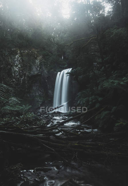 Amazing view of scenic waterfall near trees in mist - foto de stock