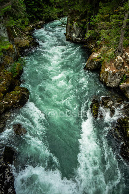 High angle view of beautiful rapid river beside rocks and trees - foto de stock