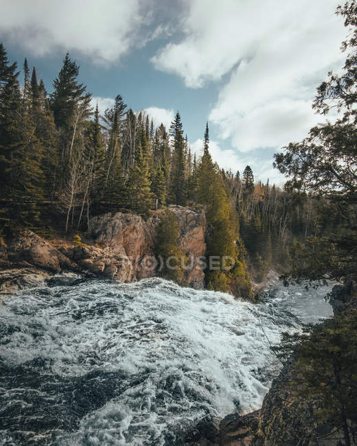 Rapid mountain river and green vegetation on shores — стокове фото