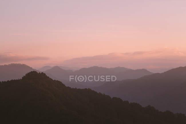 Красивий ландшафт з горами, вкритими пишною рослинністю під час золотої години — стокове фото