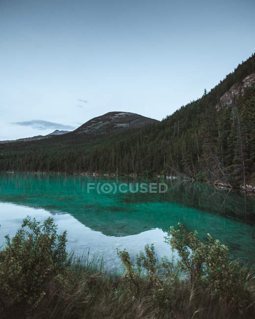 Blue sky and mountains with trees reflected in calm lake — Photo de stock