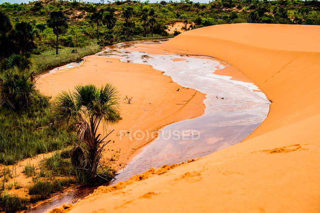 High angle view of stream through desert sand — Foto stock