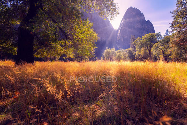 Sun shining through mountains and beautiful valley with lush vegetation — Stockfoto