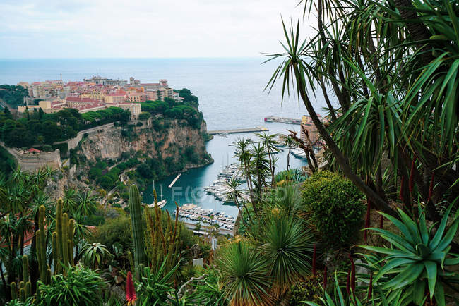 High angle view of beautiful green vegetation and town on cliffs near sea — Stock Photo