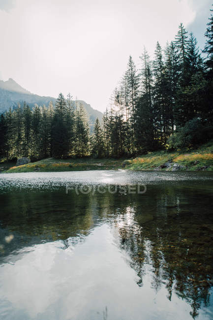 Beautiful landscape with green trees and mountains reflected in calm river — Stock Photo