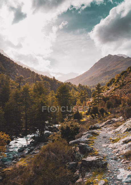 Beautiful landscape with scenic mountains, trail and rapid river between trees - foto de stock