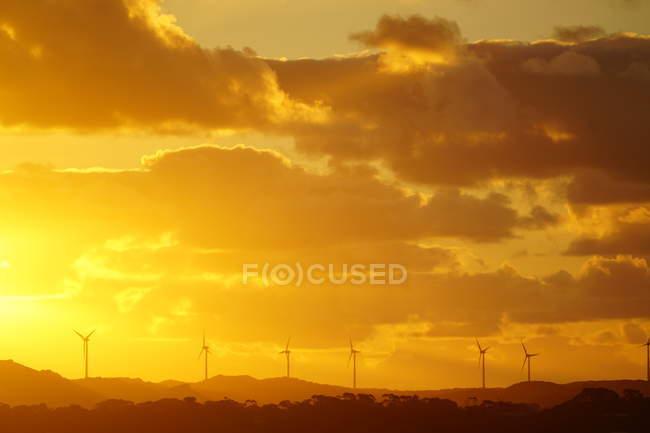 Silhuetas de moinhos de vento industriais durante o nascer do sol cénico — Fotografia de Stock