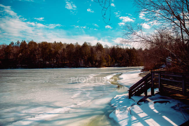 Wooden staircase to lake and forest at winter day — Photo de stock