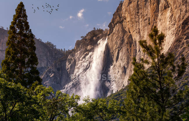 Birds flying above rocky mountains, waterfall and green trees — Foto stock