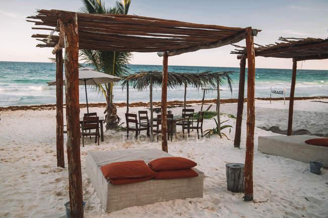Cadeiras, palmeira verde e guarda-chuvas no Seashore tropical arenoso — Fotografia de Stock