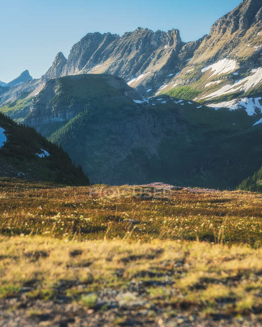 Beautiful meadow and scenic rocky mountains at sunny day — стоковое фото