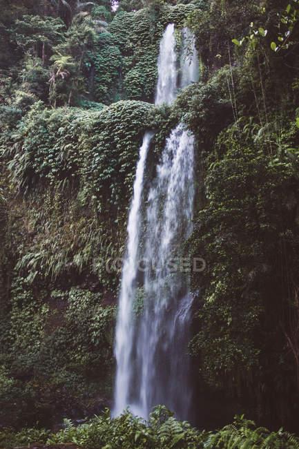 Hermosa cascada de la montaña escénica cubierta de vegetación verde - foto de stock