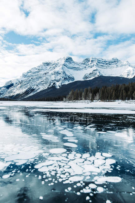 Beautiful landscape with snow-covered mountains and floating ice - foto de stock