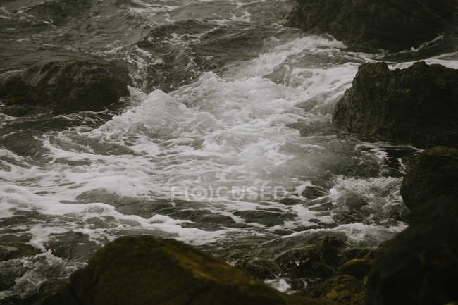 Beautiful natural view with rapid river with water flowing on stones — стоковое фото