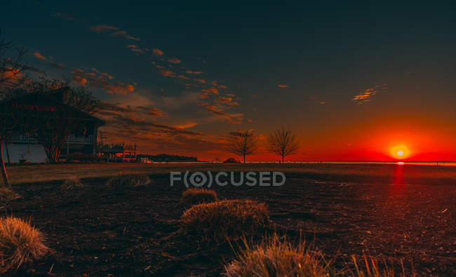 Houses and beautiful grass field at golden hour — Foto stock