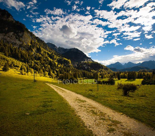 Beautiful landscape with green grass on field near mountains — Fotografia de Stock