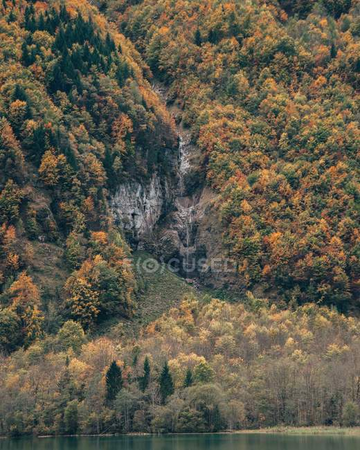 Beautiful landscape with green and orange trees growing on mountains near water — Stock Photo