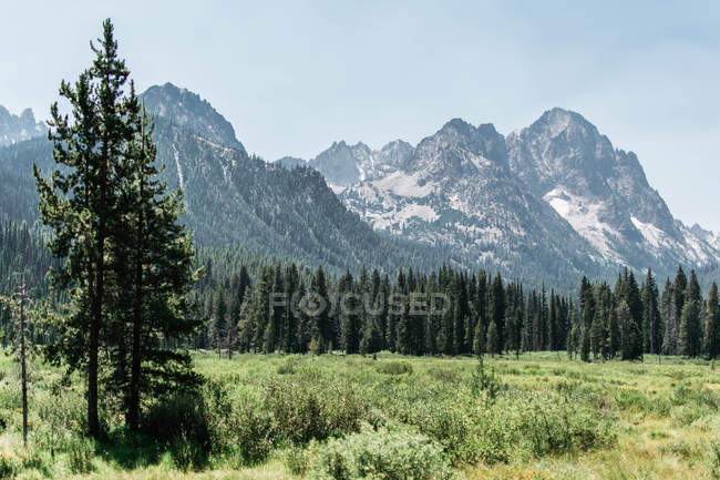 Beautiful scenic mountains near grassland at sunny day — Foto stock