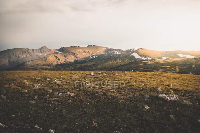 Красивый пейзаж зеленой земли на склоне холма в солнечный день — стоковое фото