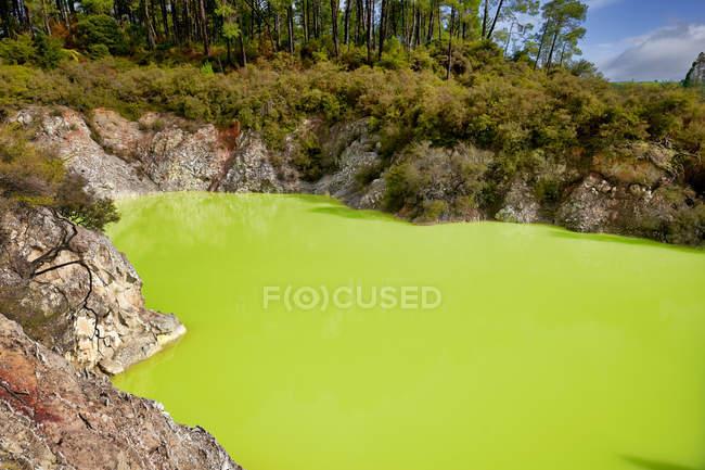 Amazing natural view of greenish lake water at sunny day — Stock Photo