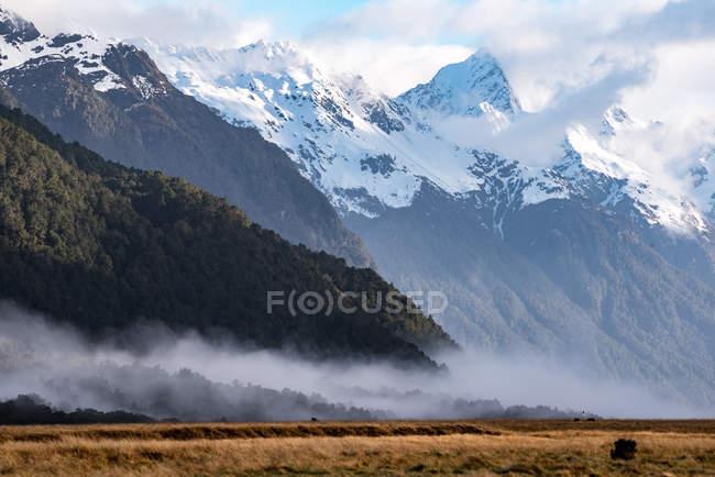 Paisagem bonita com montanhas Snow-covered e o vale gramíneo — Fotografia de Stock
