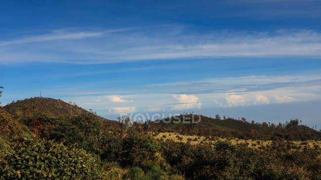 Красивый пейзаж с горами, покрытыми зелеными растениями в солнечный день — стоковое фото