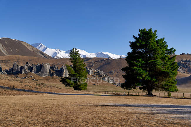 Amazing landscape with beautiful scenic mountains and trees - foto de stock