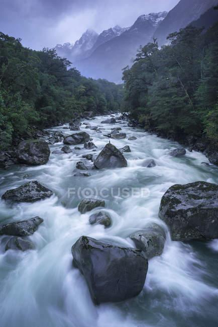 Красивая быстрая река со скалами и зеленым лесом в живописных горах — стоковое фото