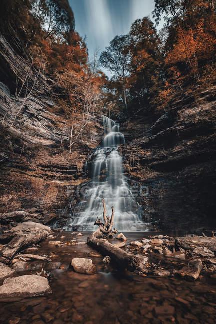 Низький кут огляду дивовижний водоспад на скелі і дерева в денний час — стокове фото