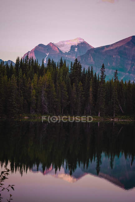 Amazing landscape with rocky mountains and pine trees reflected in calm lake at sunset - foto de stock